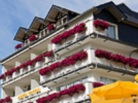 Homepage Moselstern Hotel Triton, Cochem